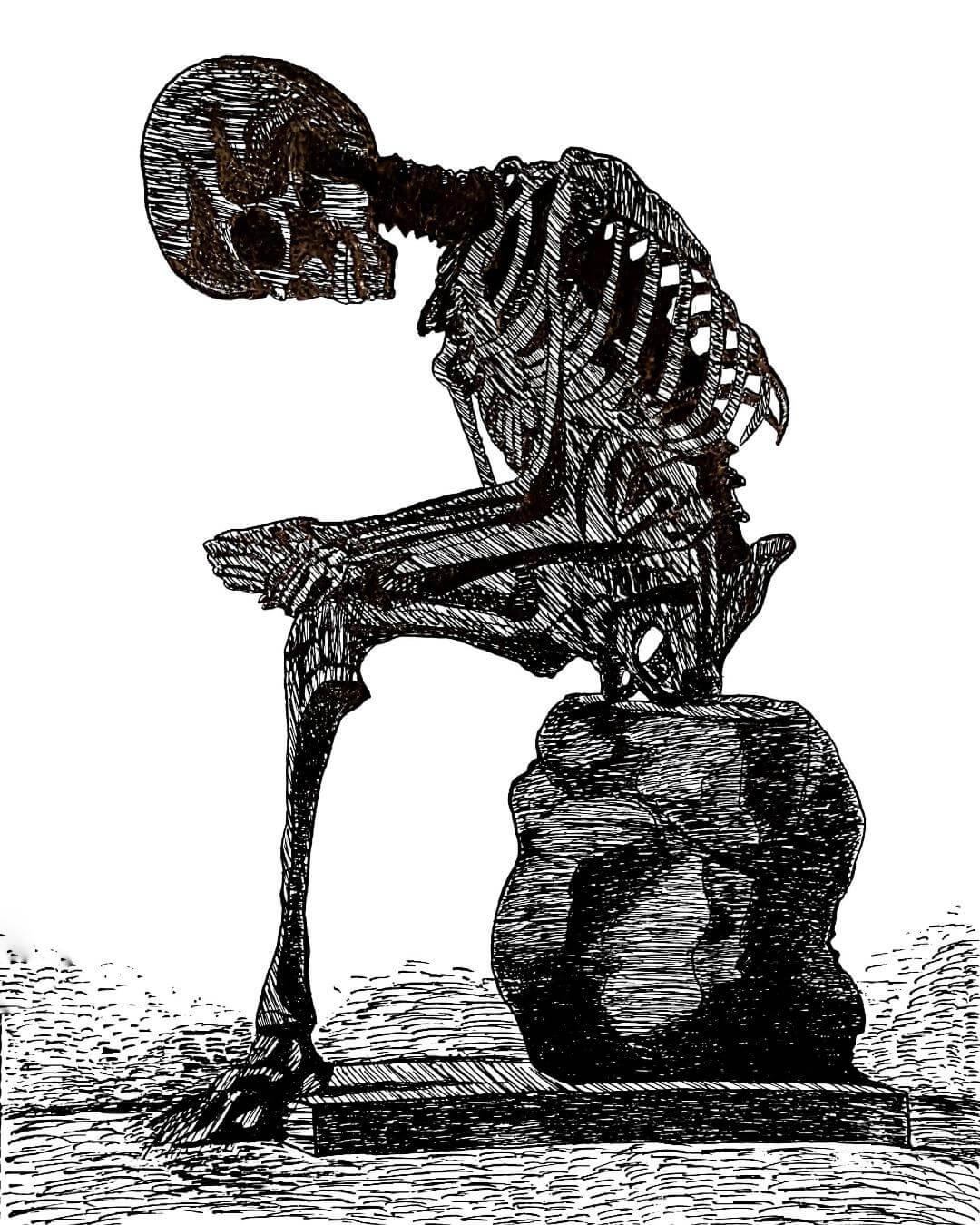 an illustration of a skeleton