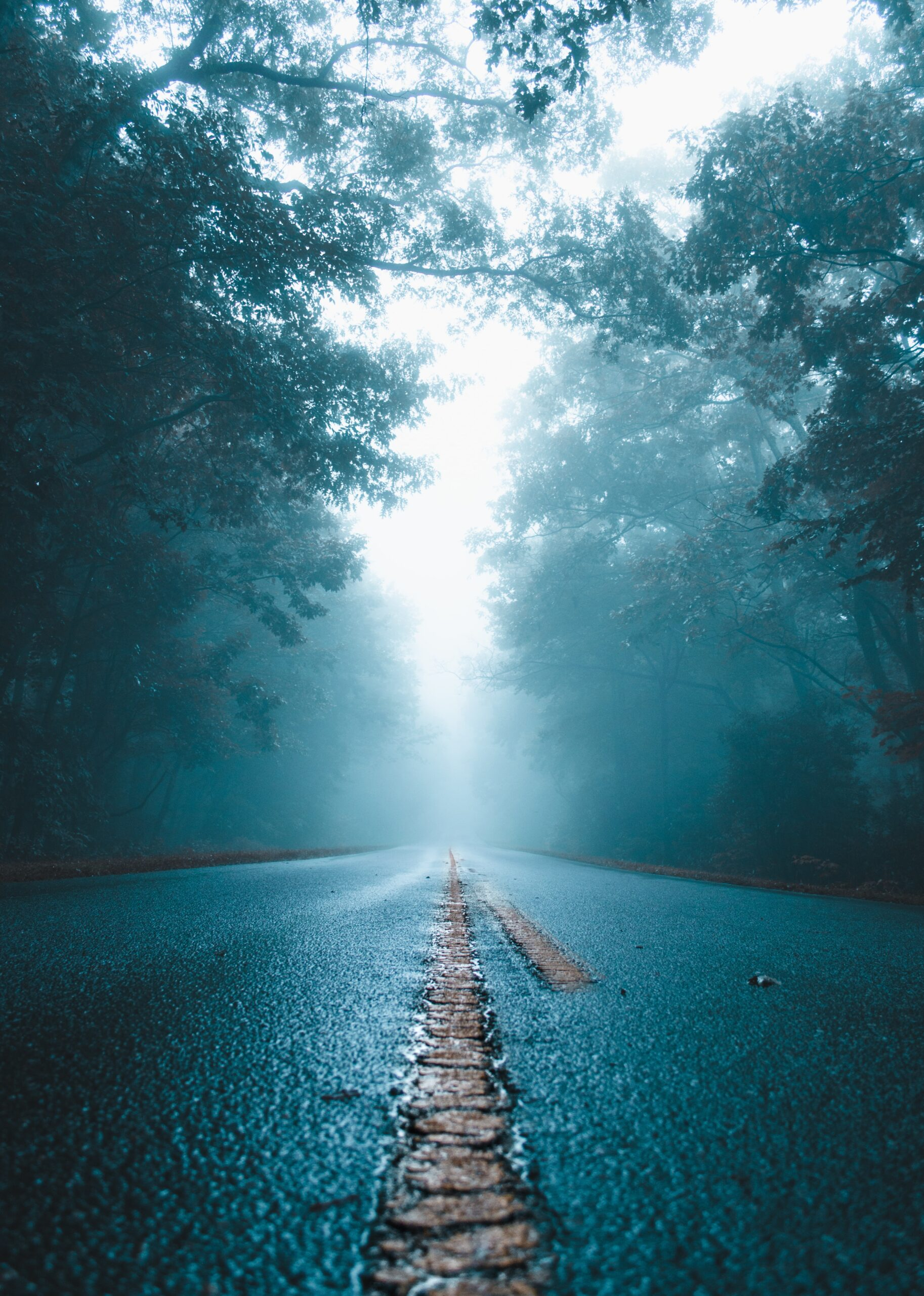 This is an image of a foggy road.
